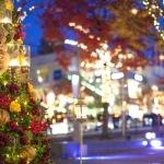 大阪の御堂筋イルミネーション・光のロードを歩こう2016