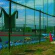 野球部慶応高校の偏差値01