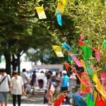 【七夕】笹飾りの作り方(折り紙)・厳選紹介(笹の葉、由来、意味)