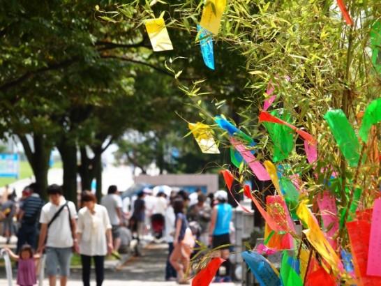 七夕笹飾り作り方折り紙笹の葉由来意味01