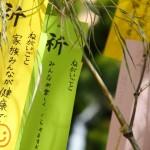 【七夕飾り】(星・織姫・彦星編)折り紙の折り方・作り方簡単マスター(厳選紹介)